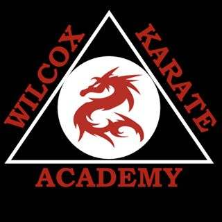 46964050 1346420498829282 3979156190356570112 N, Wilcox Karate Academy in Independence, MO